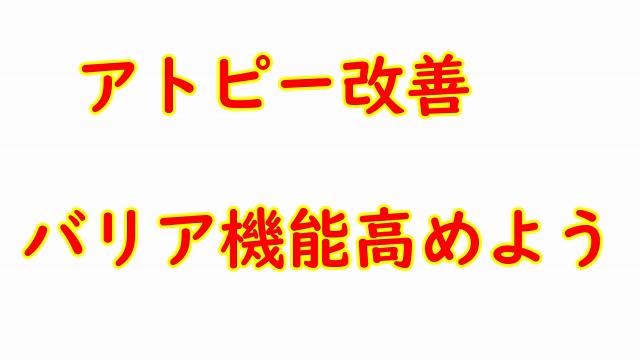 f:id:kaihelbeu:20210507113655p:plain