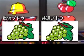 f:id:kaiji0823:20190214004748p:plain