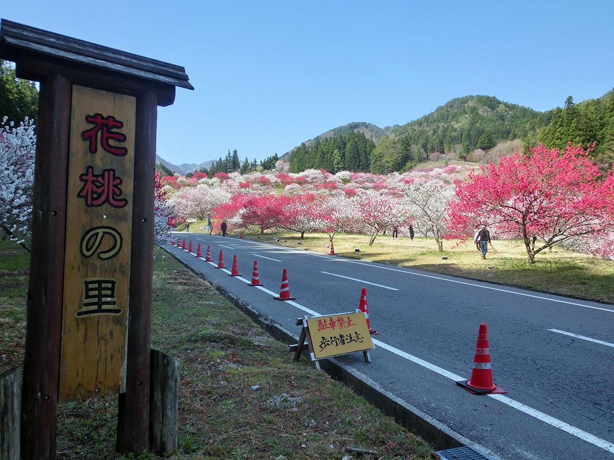 f:id:kaikajoho:20210421110734j:plain