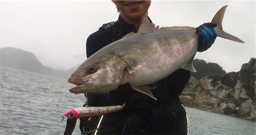 f:id:kaikouki-8titti:20190727185635j:image