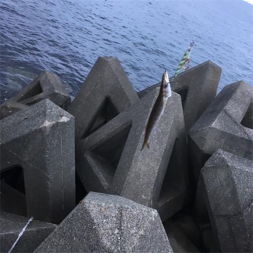 f:id:kaikouki-8titti:20190730071548j:image
