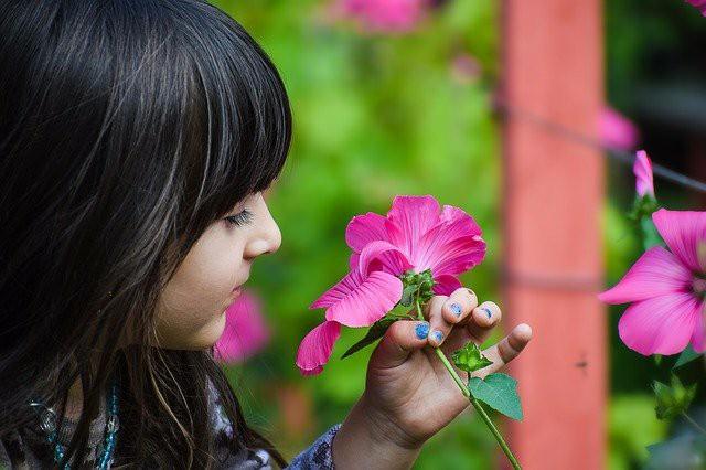 黒髪の少女がピンクの花を一輪持っている