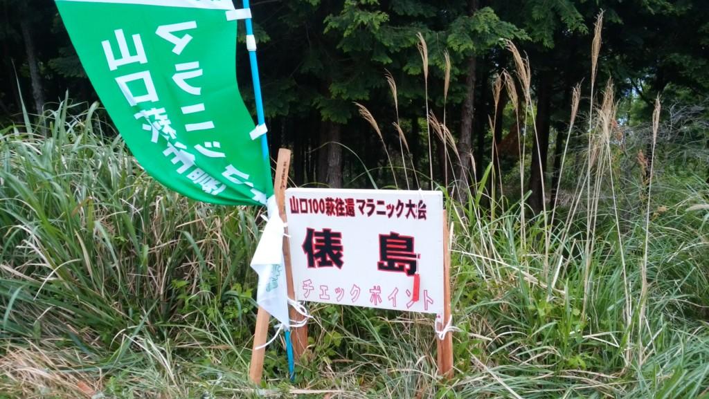 f:id:kaimizu:20160503072824j:plain