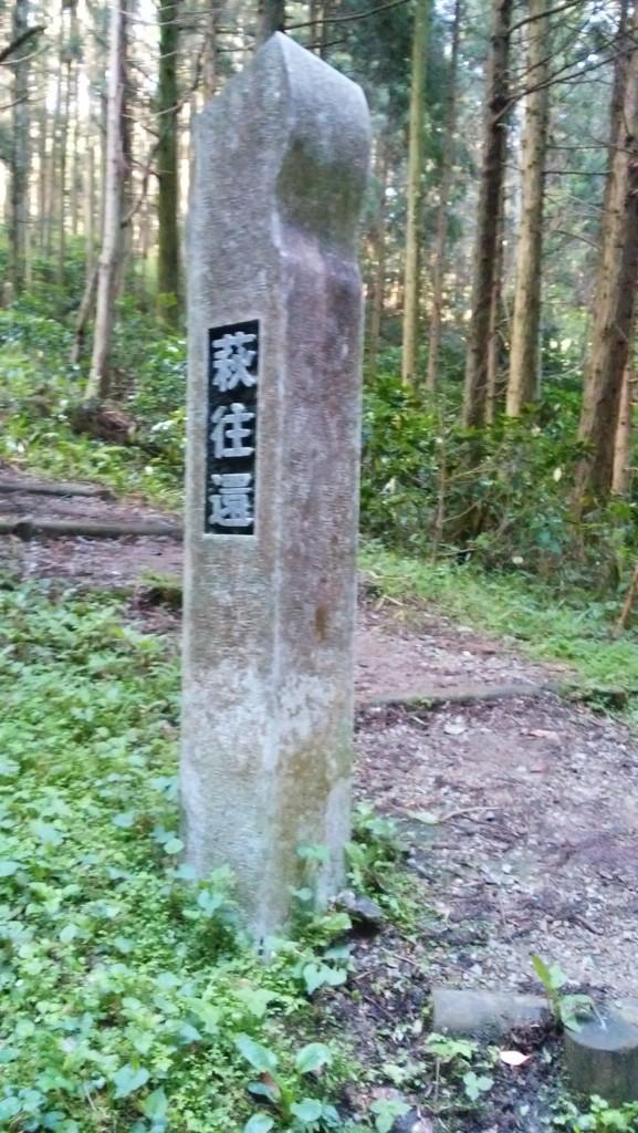f:id:kaimizu:20160504080700j:plain