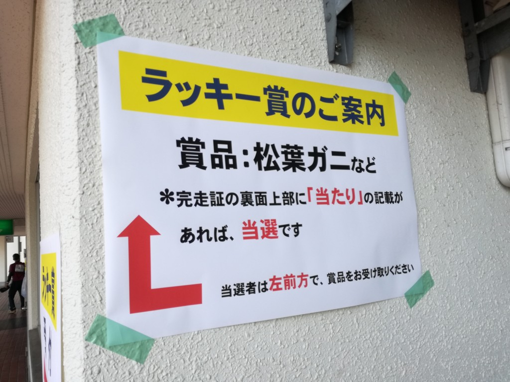 f:id:kaimizu:20170312125202j:plain