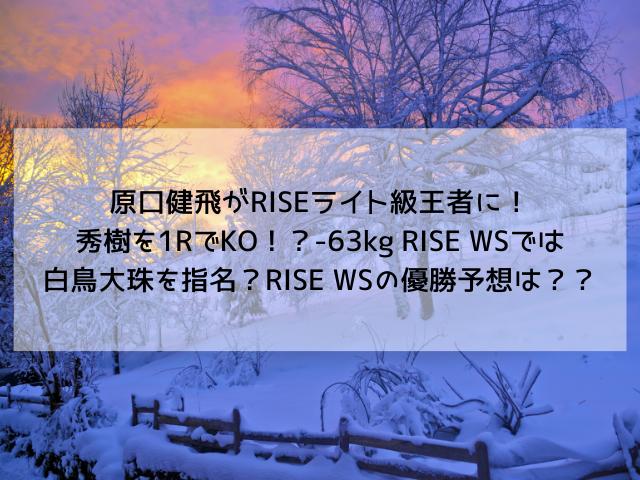 f:id:kairox:20200125111630p:plain