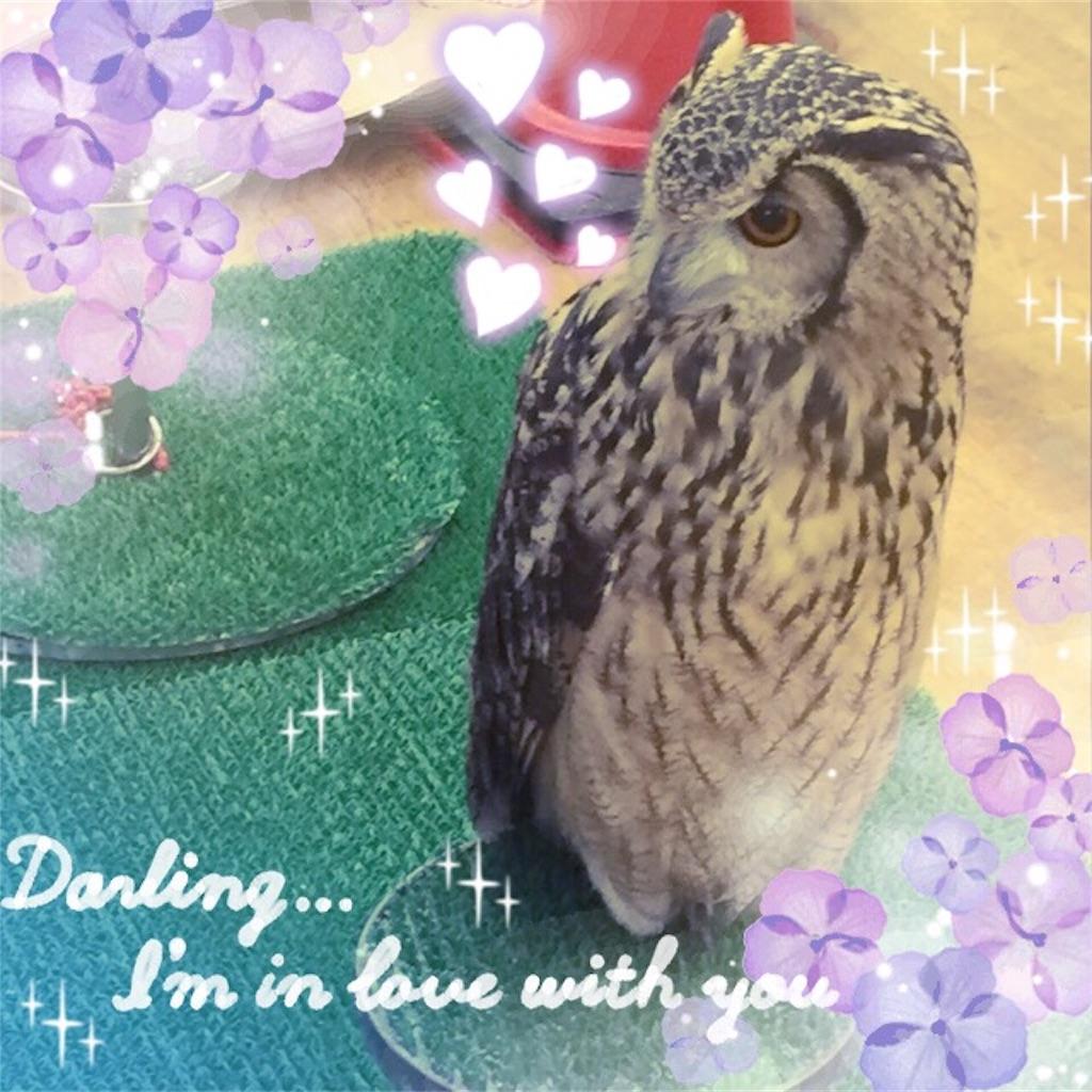 f:id:kaiseimama:20170109230458j:image