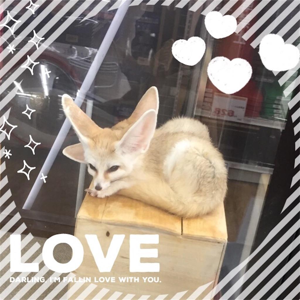 f:id:kaiseimama:20170109231150j:image