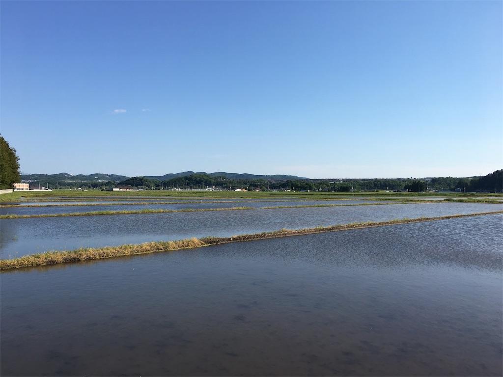 f:id:kaishaku01:20180520210412j:plain