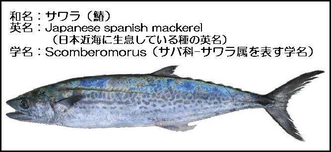 f:id:kaishounasi:20170111001838p:plain