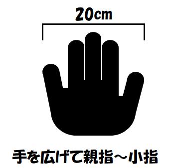 f:id:kaiteki-heya:20200215204753p:plain