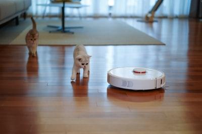 ロボット掃除機,敷居