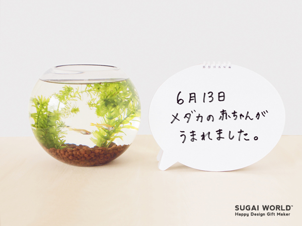 f:id:kaito_blue9:20180824153421j:plain