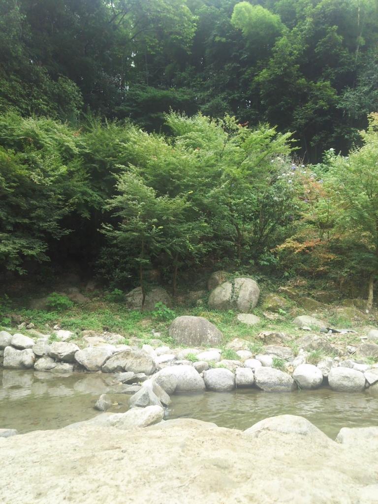 f:id:kaitokunaobakun:20180725110547j:plain