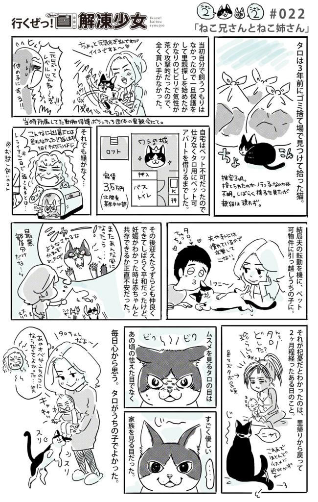 f:id:kaitousyoujyo_haha:20170305181738j:plain