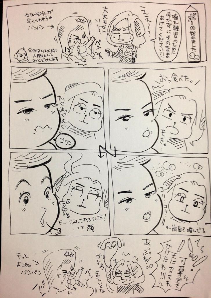 f:id:kaitousyoujyo_haha:20170305222142j:plain