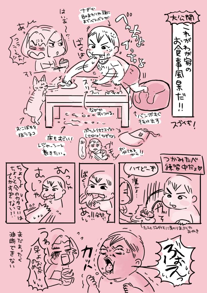 f:id:kaitousyoujyo_haha:20170511004322j:plain