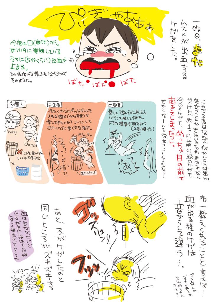 f:id:kaitousyoujyo_haha:20170616000036j:plain