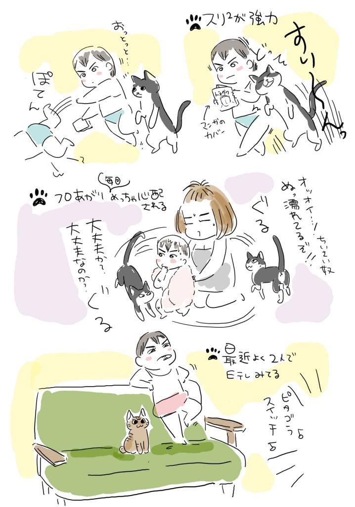 f:id:kaitousyoujyo_haha:20170627032543j:plain