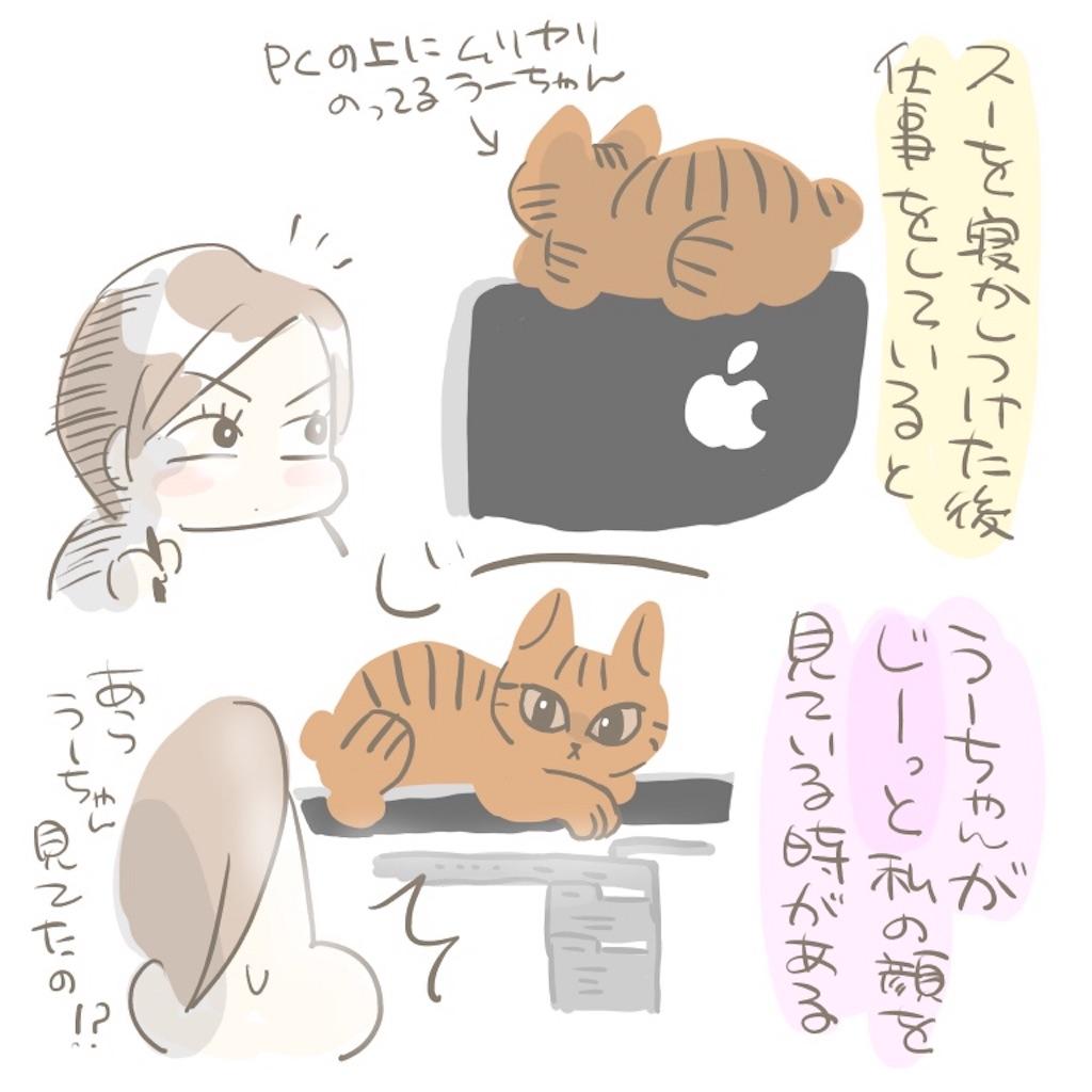 f:id:kaitousyoujyo_haha:20180129182621j:image