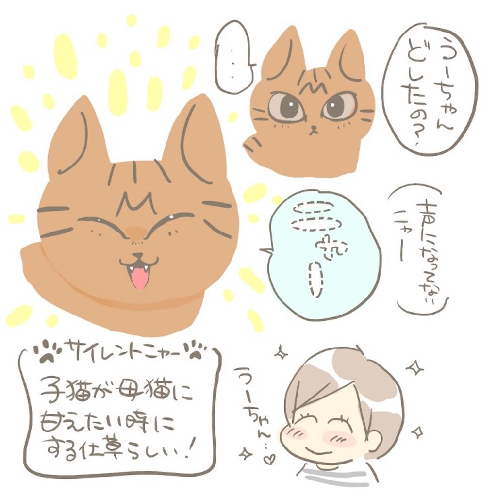 f:id:kaitousyoujyo_haha:20180129184842j:image