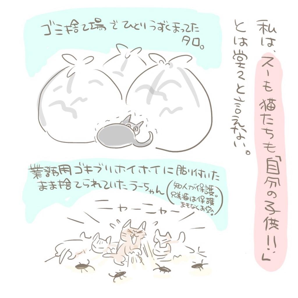 f:id:kaitousyoujyo_haha:20180129184847j:image