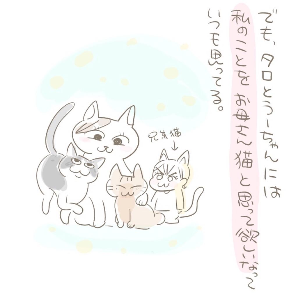 f:id:kaitousyoujyo_haha:20180129184851j:image