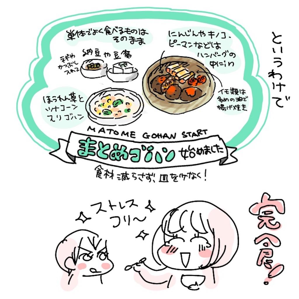 f:id:kaitousyoujyo_haha:20180520164308j:image