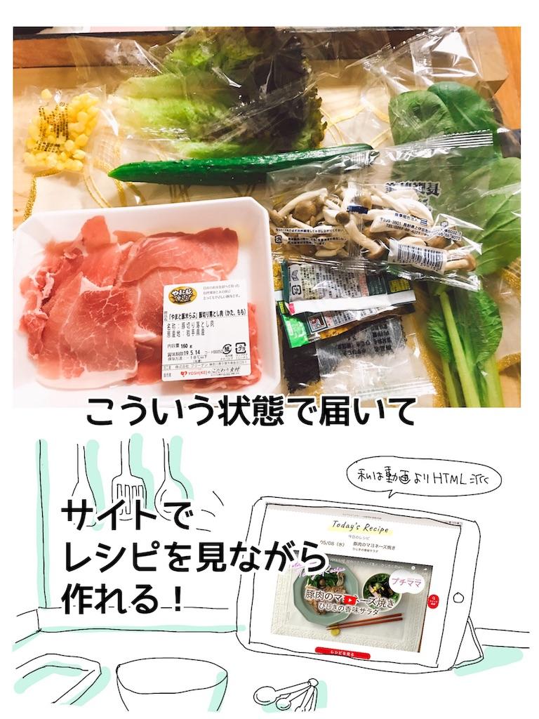 f:id:kaitousyoujyo_haha:20190508194504j:image