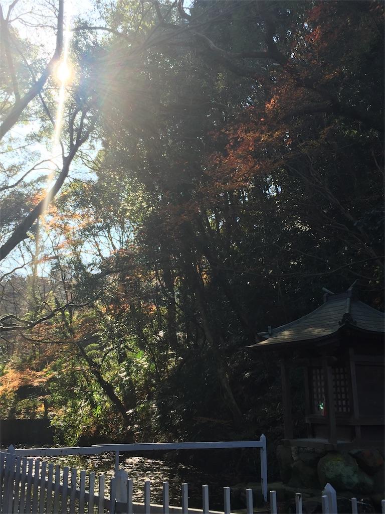 f:id:kaiunfukuko:20161221150718j:image