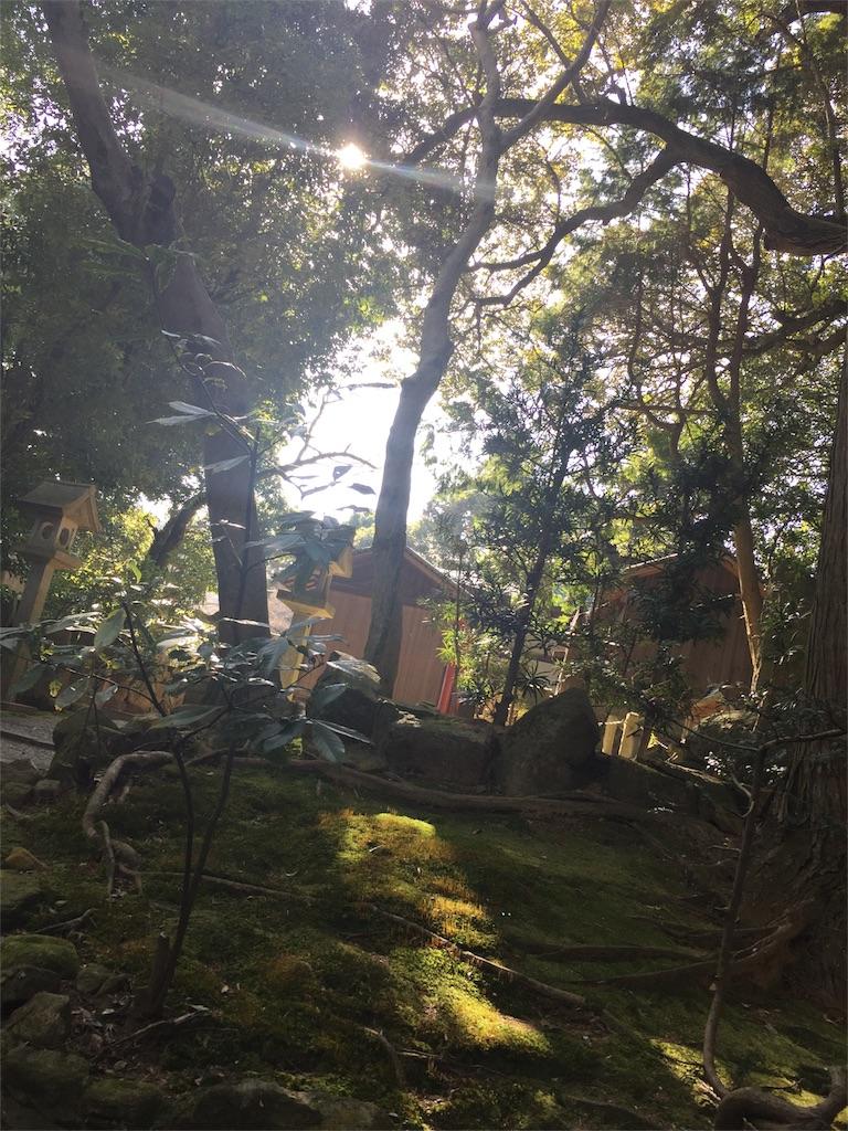 f:id:kaiunfukuko:20170129102514j:image