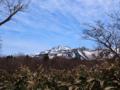知床五湖を散策