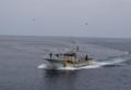 漁船が見送る船出