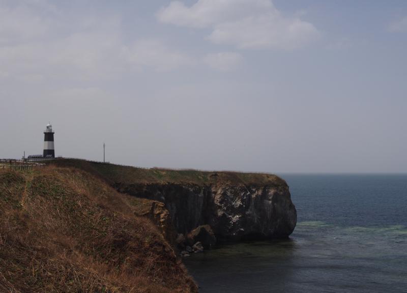 断崖絶壁…
