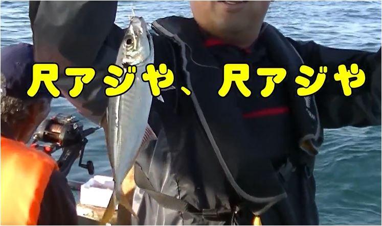 f:id:kaiyumaru:20201120082202j:plain