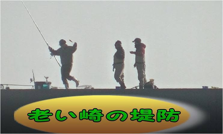 f:id:kaiyumaru:20210128181457j:plain