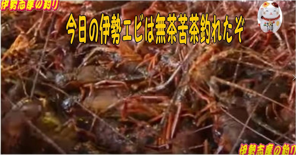 f:id:kaiyumaru:20210330025040j:plain