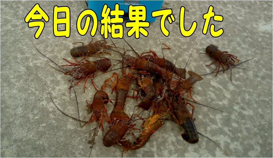 f:id:kaiyumaru:20210402232948j:plain