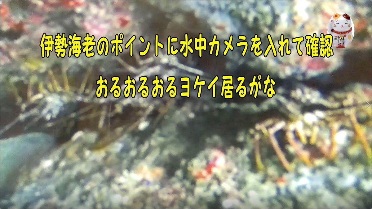 f:id:kaiyumaru:20210419235207j:plain