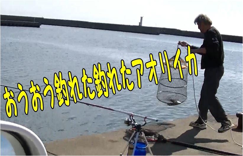 f:id:kaiyumaru:20210518082246j:plain