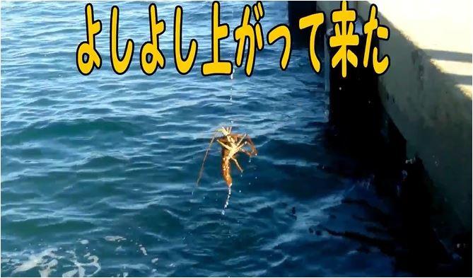 f:id:kaiyumaru:20210718015826j:plain