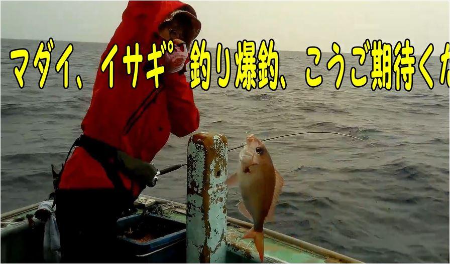 f:id:kaiyumaru:20210724010550j:plain