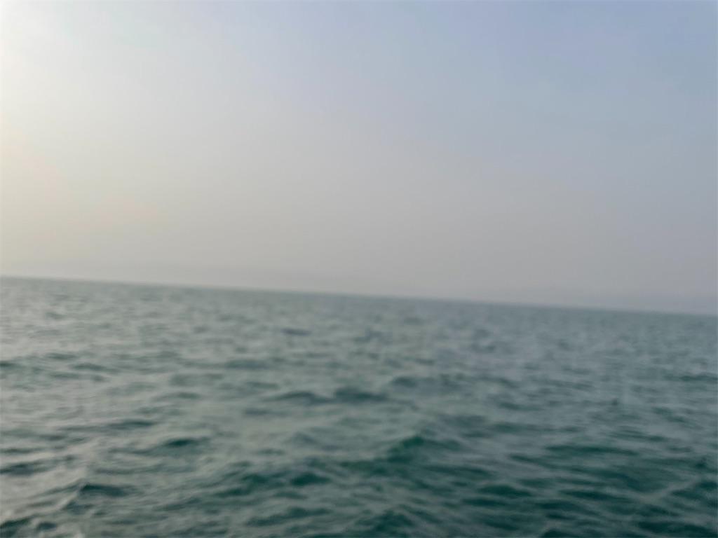 f:id:kaiyuumaru:20210330151706j:image