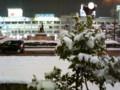 新潟駅前2-20090218