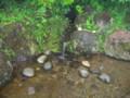 鰈山清水(村上市大毎)-新・新潟県の名水03