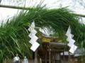 弥彦神社・茅の輪くぐり-20090630-04