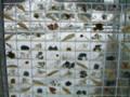 水と土の芸術祭 2009-祭りの休憩室-新津庭02(新津美術館)