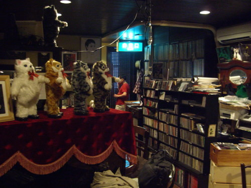 JAZZY SPACE CATS HOUSE(新潟市中央区古町通6)02