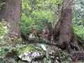 慈光寺(五泉市蛭野)参道の杉並木