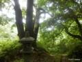 妻戸神社(長岡市寺泊野積)[彌彦神社の摂社]